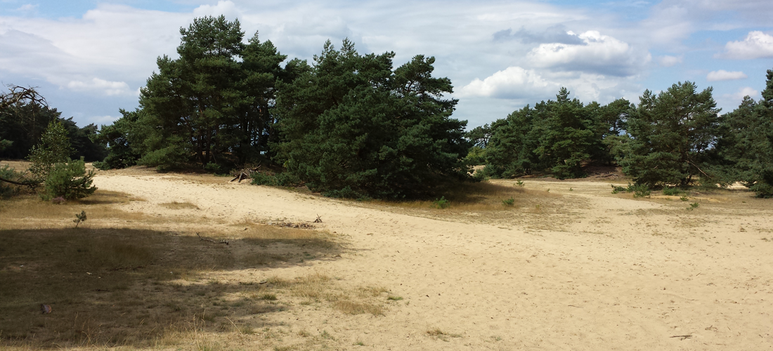 Wandelen over de zandverstuiving